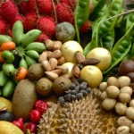 Some of the 116 varieties of fruit picked at The Botanical Ark in one day