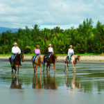 Riding horses along Wonga Beach with Daintree rainforest background, Queensland, Australia