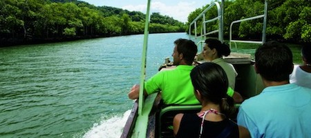 A birdwatching tour on the Daintree River, Tropical North Queensland, Australia