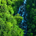 A photo of waterfalls in the Daintree National Park