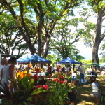 Mossman markets, only a 20 minute drive from The Botanical Ark Retreat